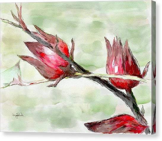 Caribbean Scenes - Sorrel Plant Canvas Print
