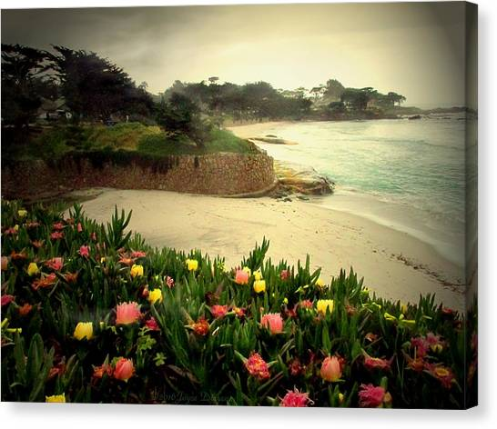 Carmel Beach And Iceplant Canvas Print