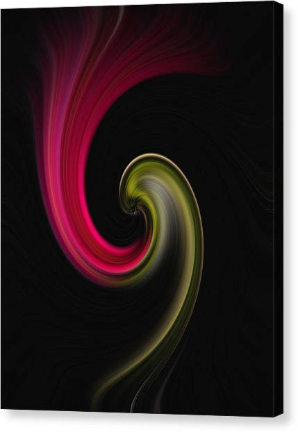 Carnation Twirl Canvas Print
