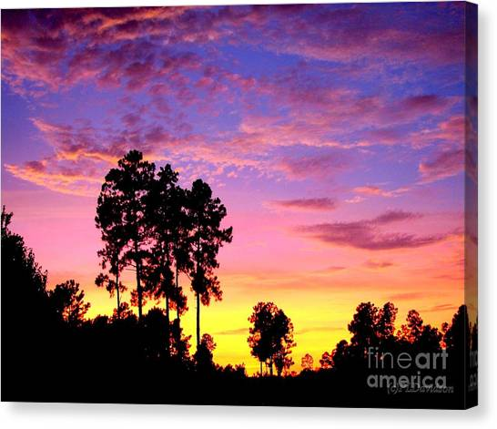 Carolina Pine Sunset Canvas Print