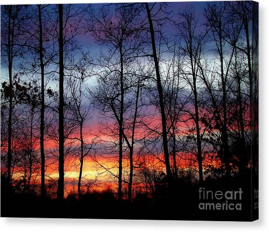 Carolina Sunset Canvas Print