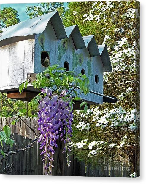 Carolina Wisteria Bird Hotel Canvas Print