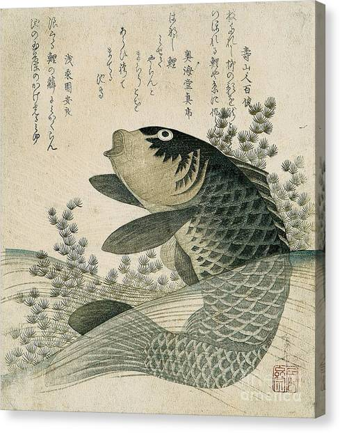 Fish Canvas Print - Carp Among Pond Plants by Ryuryukyo Shinsai