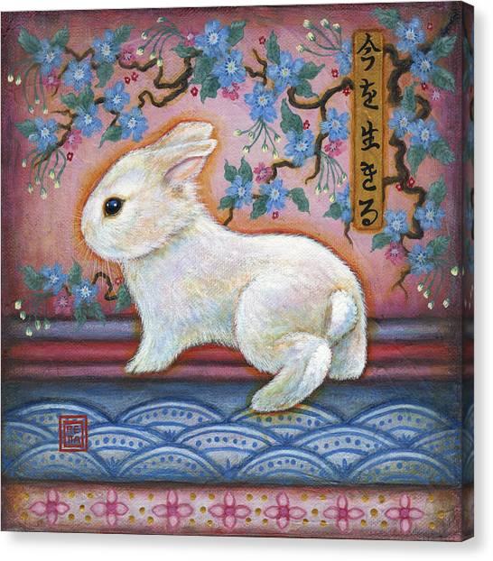 Carpe Diem Rabbit Canvas Print