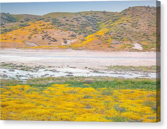 Carrizo springs canvas prints page 2 of 5 fine art america carrizo springs canvas print carrizo plain wildflowers at sunset by marc crumpler mightylinksfo
