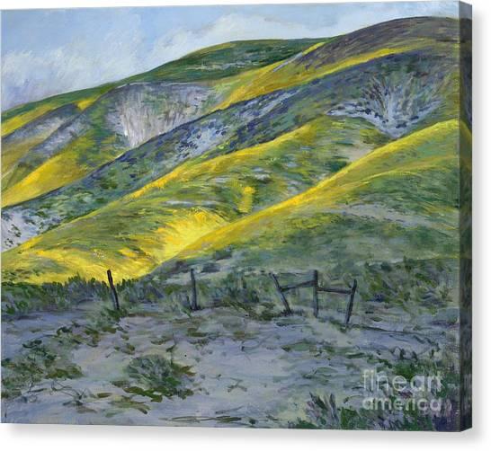 Carrizo Spring Mustard Canvas Print
