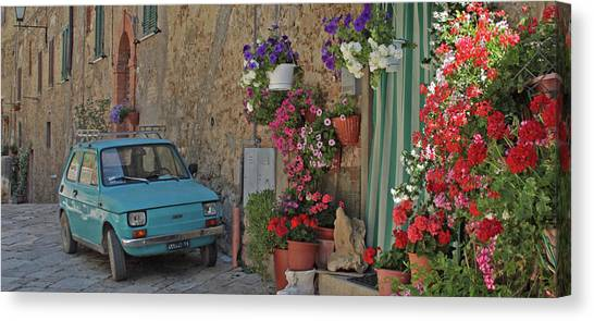 Street Scenes Canvas Print - Cars And Flowers by Jacci Freimond Rudling