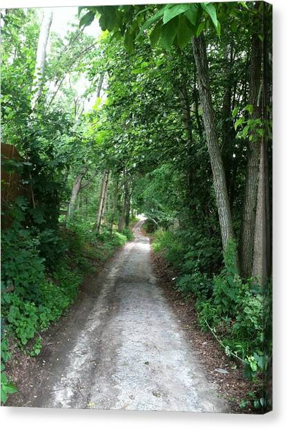 Dirt Road Canvas Print - Cart Path by Hello Kale