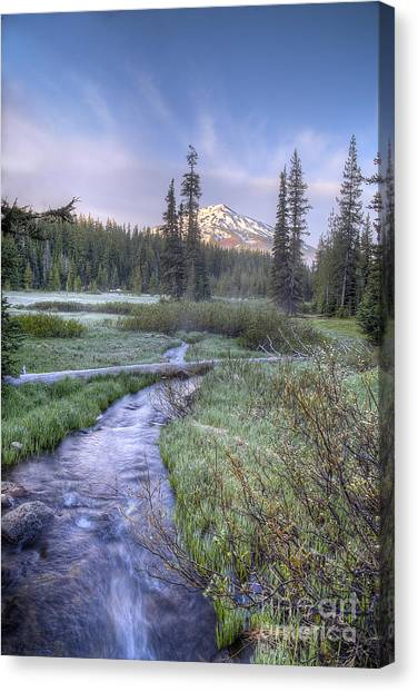 Bachelor Canvas Print - Cascade Morning by Twenty Two North Photography