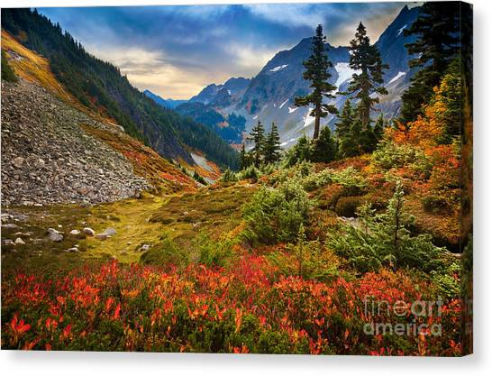 Vegetation Canvas Print - Cascade Pass Fall by Inge Johnsson
