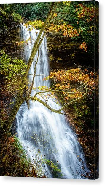 Cascades Deck View Canvas Print