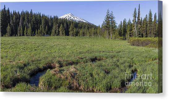 Bachelor Canvas Print - Cascades Meadow by Twenty Two North Photography