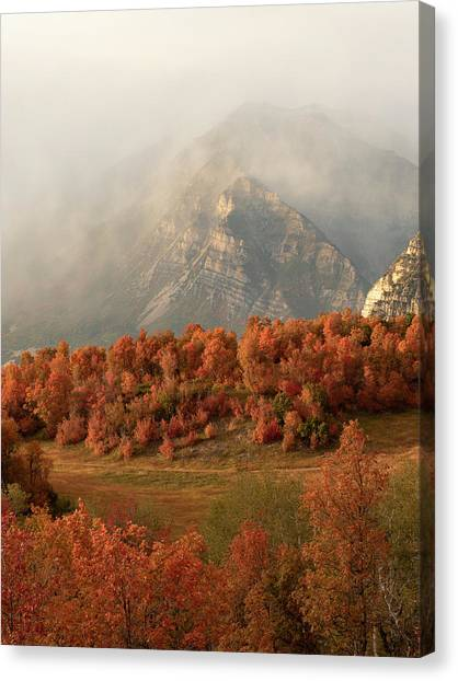 Cascading Fall Canvas Print