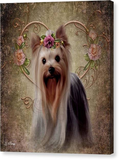 Yorkie Canvas Print - Casey by G Berry