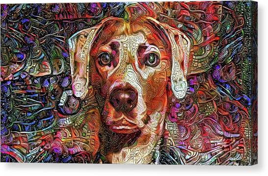 Cash The Lacy Dog Canvas Print