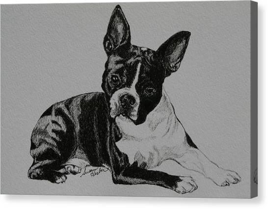 Cashman Canvas Print