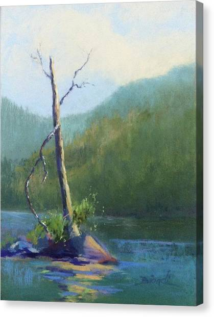 Castle Lake Snag Canvas Print