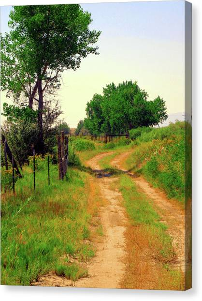 Castledale Farm Road Canvas Print