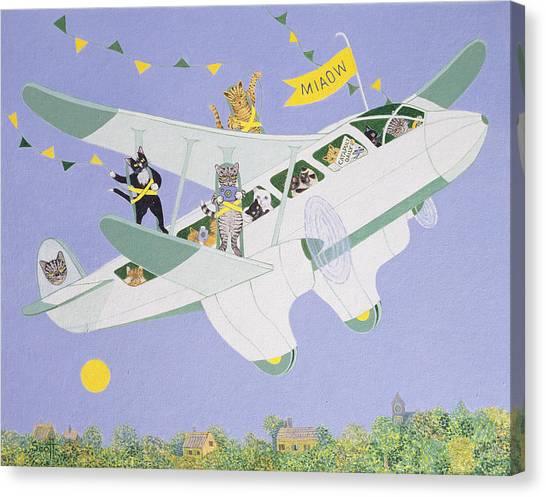 Bunting Canvas Print - Cat Air Show by Pat Scott