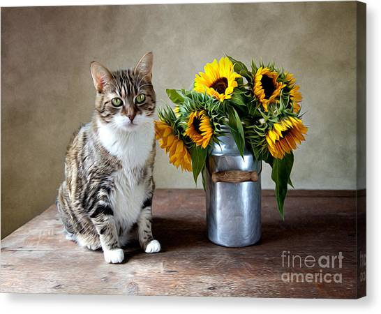 Antique Canvas Print - Cat And Sunflowers by Nailia Schwarz