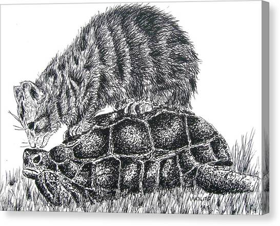 Cat And Turtle Canvas Print