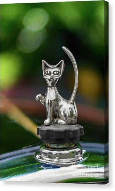Mascot Canvas Print - Cat Bonnet Mascot by Adrian Evans