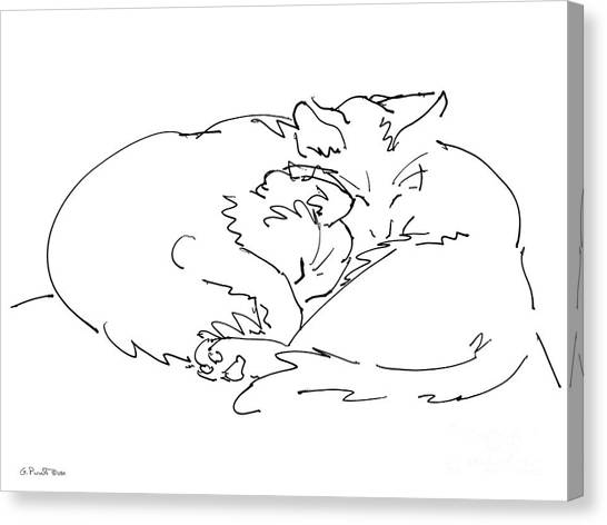 Cat Drawings 2 Canvas Print