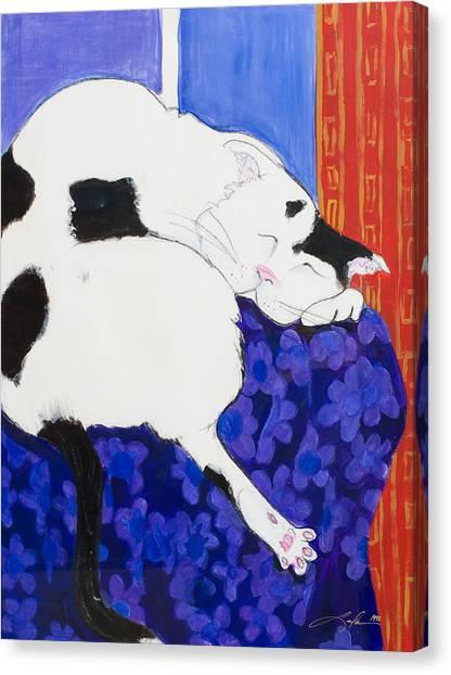 Cat IIi Peaceful   Canvas Print
