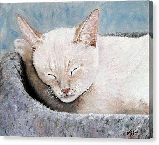 Cat Nap Canvas Print by Merle Blair