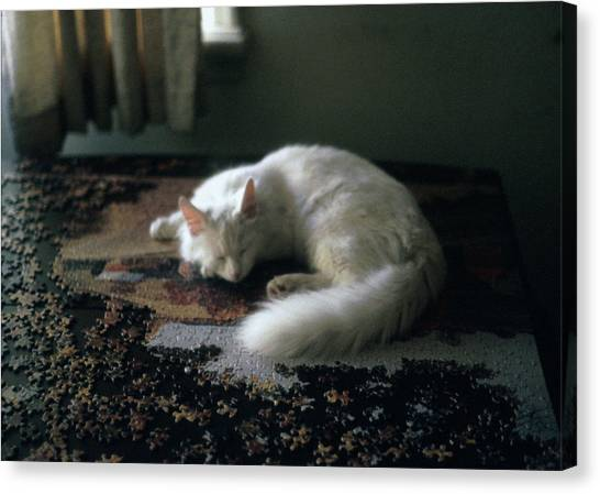 Cat On A Puzzle Canvas Print