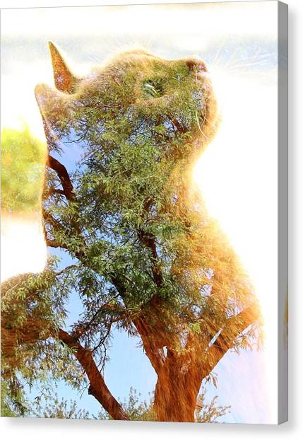 Cat Or Tree Canvas Print