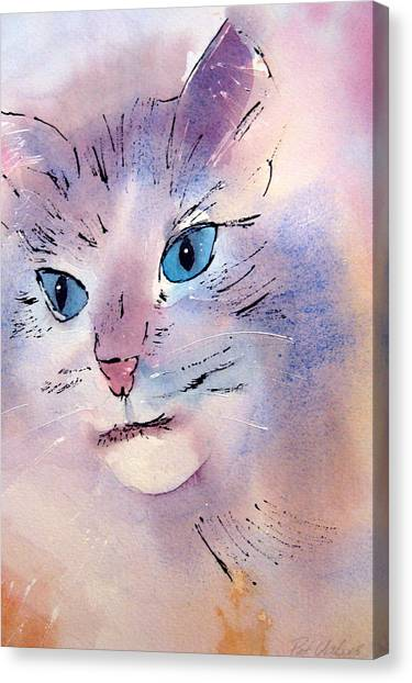 Cat Canvas Print by Pat Vickers