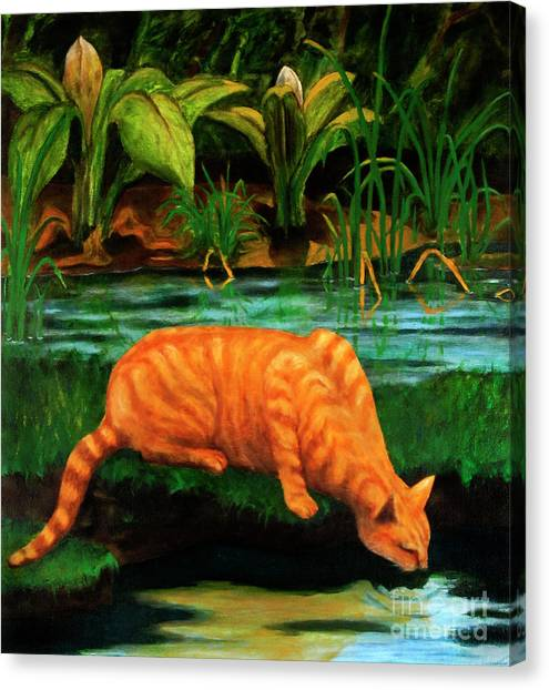 Mossy Forest Canvas Print - Cat Sip by Will Lewis