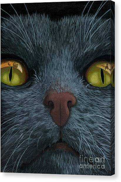 Cat Vision - Black Cat Oil Painting Canvas Print by Linda Apple