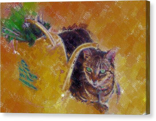 Cat With Watering Can Canvas Print