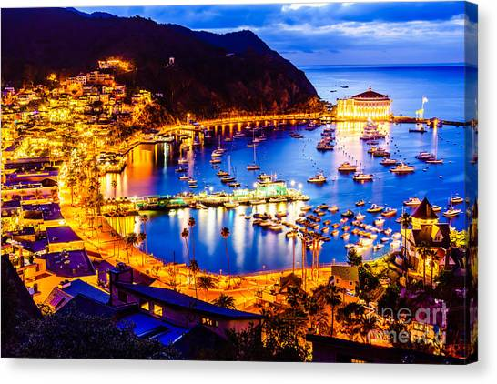 Catalina Island Avalon Bay At Night Canvas Print by Paul Velgos