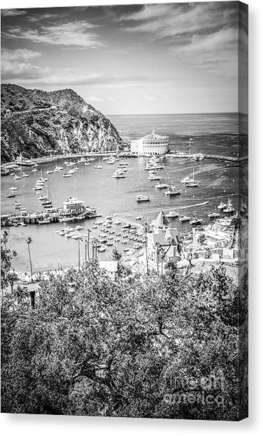Casino Pier Canvas Print - Catalina Island Vertical Black And White Photo by Paul Velgos
