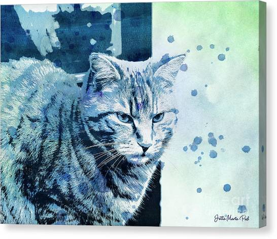 Creative Manipulation Canvas Print - Catbird Seat by Jutta Maria Pusl