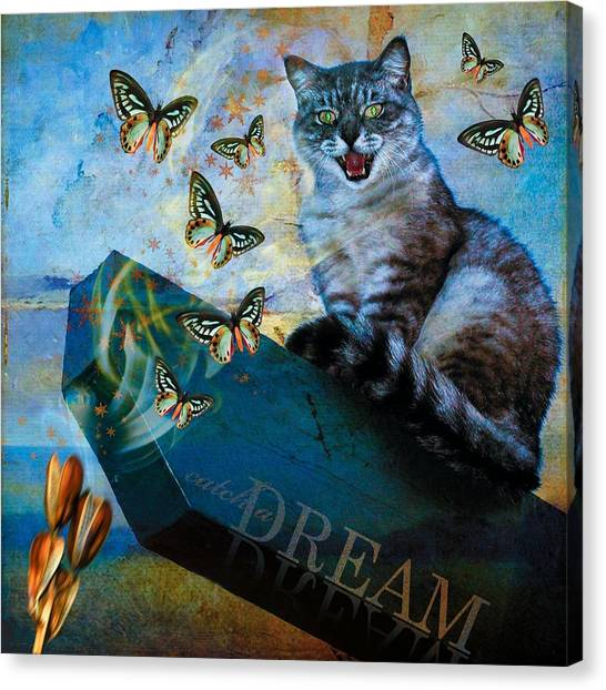 Catch A Dream Canvas Print