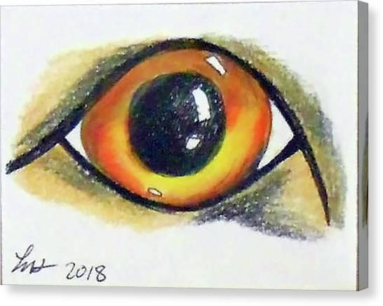 Cateye Canvas Print