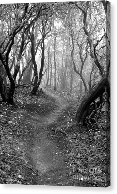 Cathedral Hills Serenity In Black And White Canvas Print