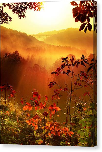 Cathedral Of Light - Special Crop Canvas Print