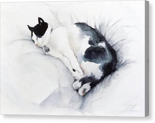 Catnap 1-2 Canvas Print