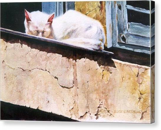 Catnap Canvas Print by Marion  Hylton