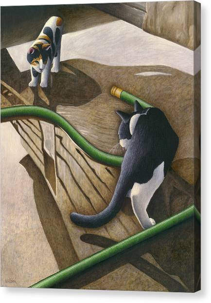 Calico Cat Canvas Print - Cats And Garden Hose by Carol Wilson