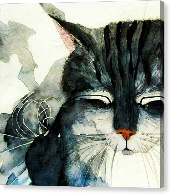 Kittens Canvas Print - Cats Whiskers by Paul Lovering