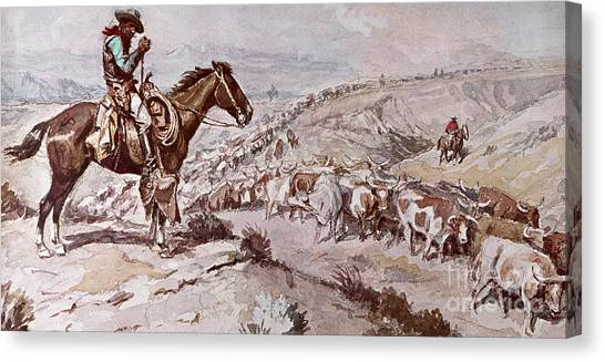 Bull Riding Canvas Print - Cattle Drive by Charles Marion Russell