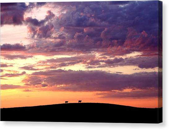 Cattle Ridge Sunset Canvas Print