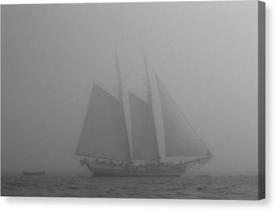 Caught In A Fog Canvas Print