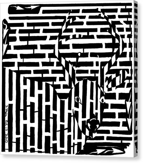 Caught In The Headlights Maze Canvas Print by Yonatan Frimer Maze Artist